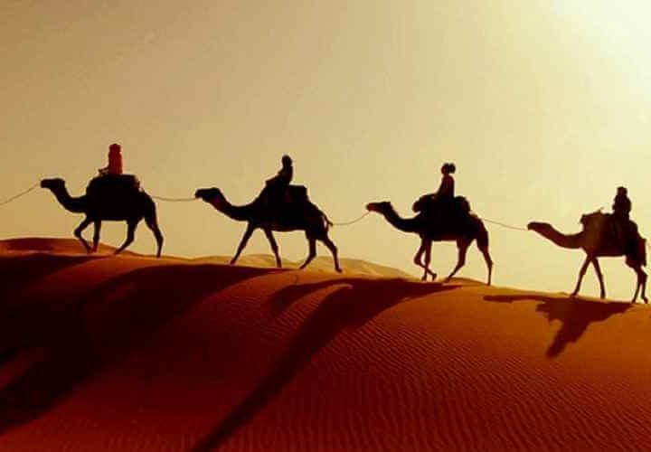 vip desert safari dubai dubai desert safari tour