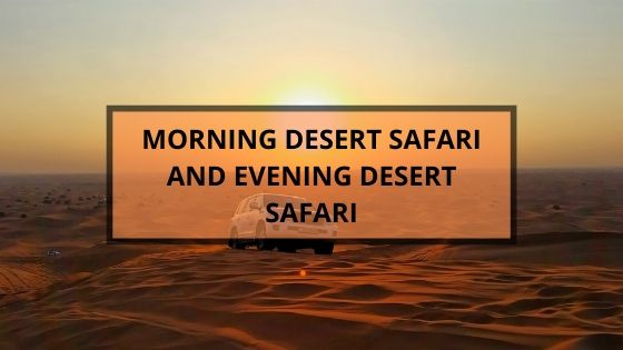 morning evening safari